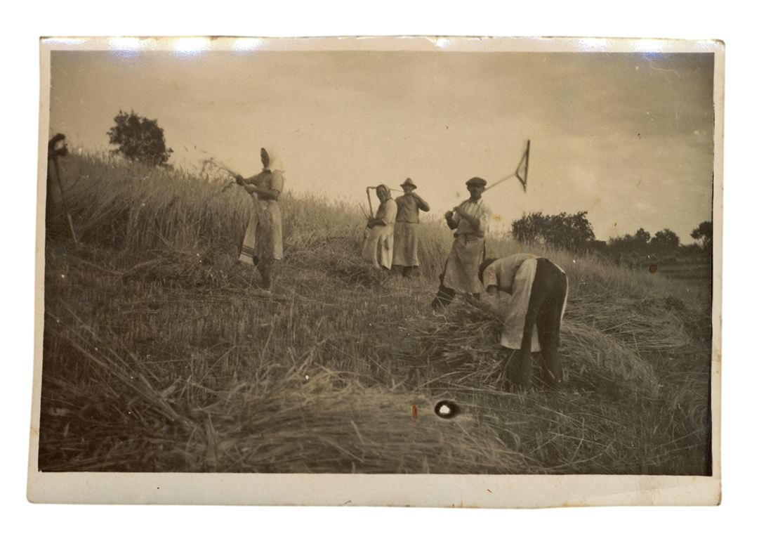 Old photo of farm villagers working on their land