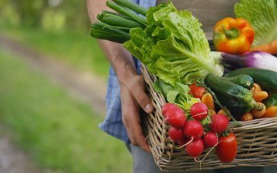What is the difference between Natural Farming and Organic farming?